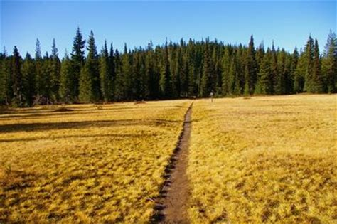 Indian Racetrack via the PCT Hike - Hiking in Portland