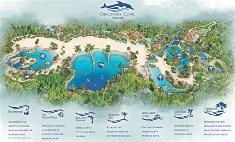 Discovery Cove - Magical DIStractions