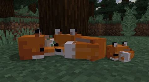 Minecraft now has foxes, brown mooshrooms, and 'Suspicious